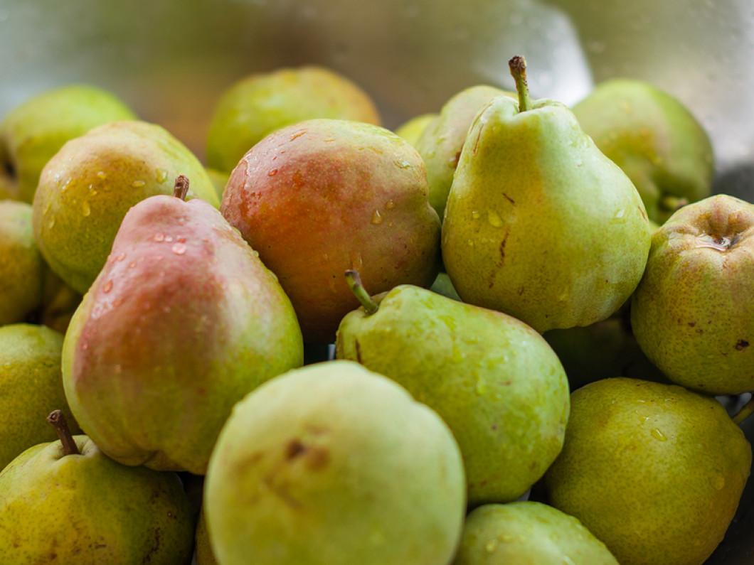 Purchase Fresh Stone Fruit Today