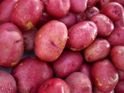 50lb Box of Red Potatos - $28